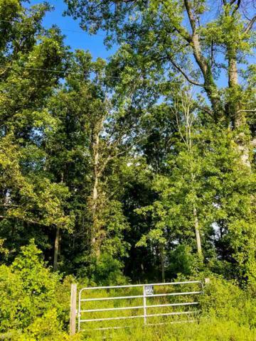 TBD N 800 E, Hartford City, IN 47348 (MLS #201836373) :: The ORR Home Selling Team
