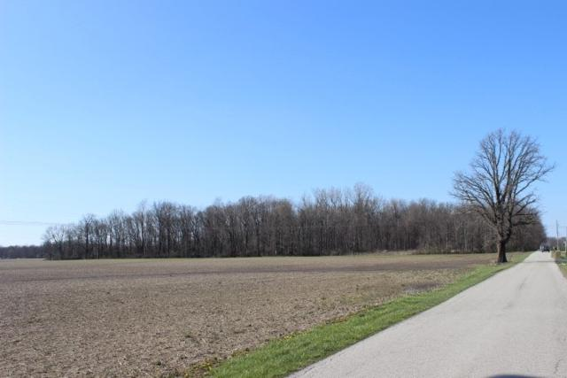 8600 Blk E County Road 450 N, Albany, IN 47320 (MLS #201906733) :: The ORR Home Selling Team
