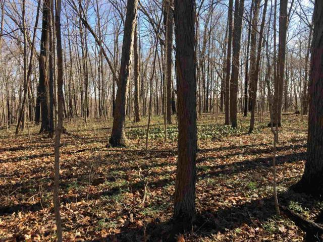 Lot 20 Bicycle Bluff Lane, Delphi, IN 46923 (MLS #201914099) :: The Romanski Group - Keller Williams Realty