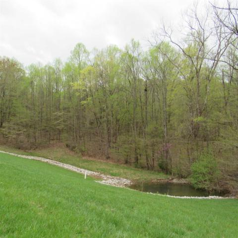 Hanson Cemetery Road, Bloomington, IN 47401 (MLS #201914602) :: The ORR Home Selling Team