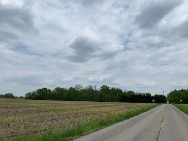 15660 W River Valley Road, Daleville, IN 47334 (MLS #201919182) :: The ORR Home Selling Team
