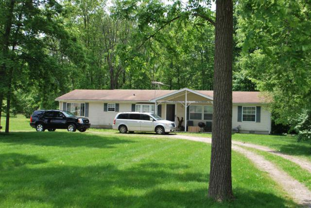 8321 S Pugsley Road, Daleville, IN 47334 (MLS #201923210) :: The ORR Home Selling Team