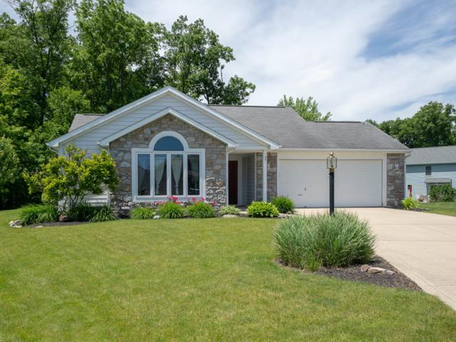 10823 Coriander Place, Fort Wayne, IN 46818 (MLS #201924854) :: The Dauby Team