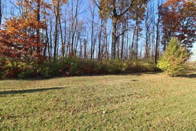 2628 S Crane Pond Drive, Marion, IN 46952 (MLS #201949137) :: The Carole King Team