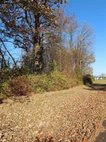2634 S Crane Pond Drive, Marion, IN 46952 (MLS #201949141) :: The Carole King Team
