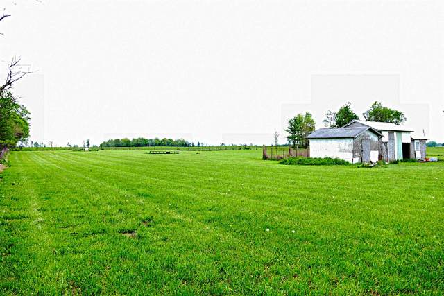 16880 N Cr 450 E Road, Eaton, IN 47338 (MLS #202018248) :: The ORR Home Selling Team