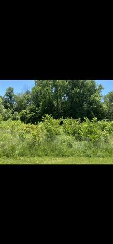LOT 4 Shady Meadows Dr Drive, Solsberry, IN 47459 (MLS #202021535) :: Parker Team