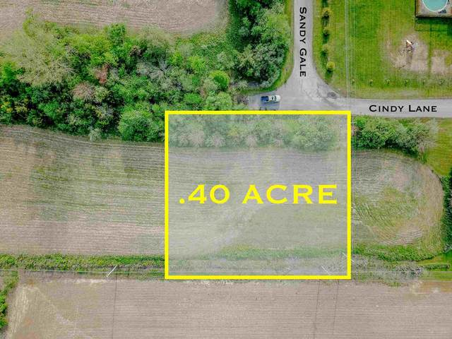 0000 Cindy Lane, New Castle, IN 47362 (MLS #202021642) :: Aimee Ness Realty Group