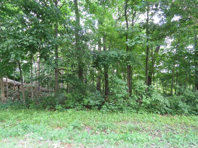lots 14/14b Finlandia Way, Albion, IN 46701 (MLS #202023831) :: The ORR Home Selling Team