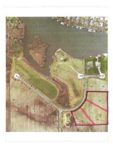 8 Carriage Lane, Monon, IN 47959 (MLS #202025811) :: Anthony REALTORS