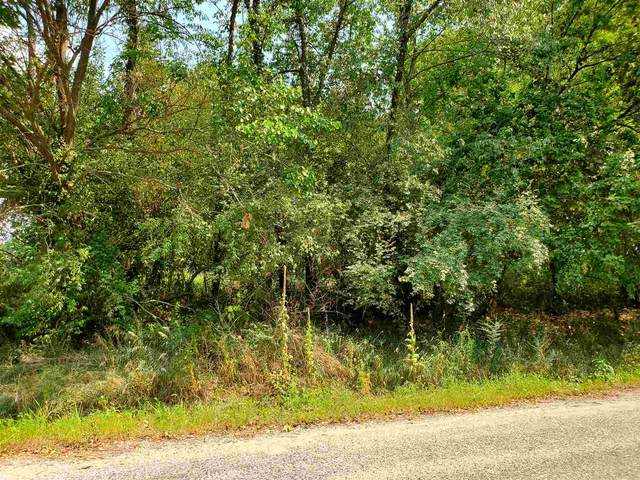 TBD N 1000 W Lots 40 & 40B Little Lime Lake, Orland, IN 46776 (MLS #202034257) :: The Natasha Hernandez Team