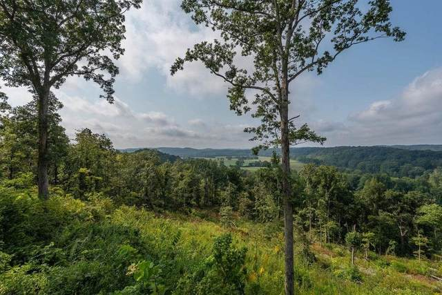 0 Us Highway 50, Shoals, IN 47581 (MLS #202108032) :: Aimee Ness Realty Group