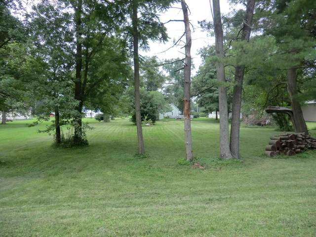 TBD National Street, Medaryville, IN 47957 (MLS #202130415) :: Aimee Ness Realty Group