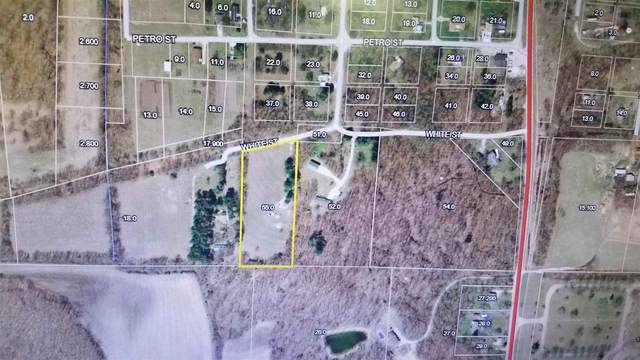 305 S White Street, San Pierre, IN 46374 (MLS #202140053) :: Aimee Ness Realty Group