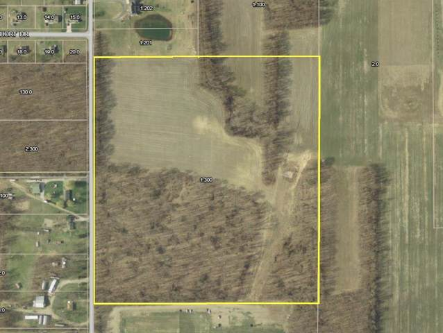 TBD S 500 East Road, Knox, IN 46534 (MLS #202140686) :: Aimee Ness Realty Group