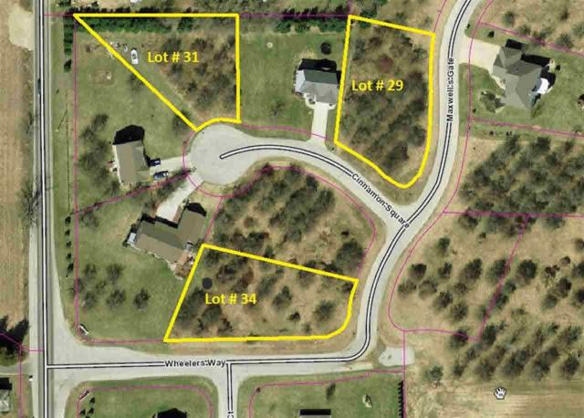 64821 Cinnamon Square, Goshen, IN 46526 (MLS #677254) :: Parker Team