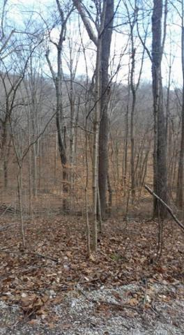 Lot 5 Wildwood Lake Shore Road, Paoli, IN 47454 (MLS #201901758) :: Parker Team