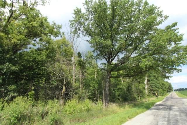 500 W 1200 S Road, Warren, IN 46792 (MLS #202011888) :: Select Realty, LLC