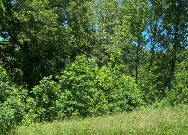 lot 1 E Shady Lane, Solsberry, IN 47459 (MLS #202021527) :: Parker Team