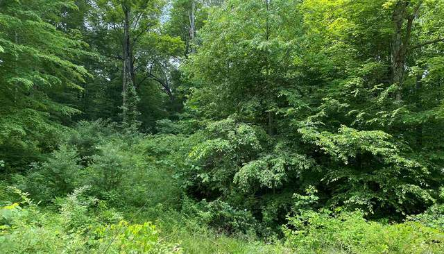 LOT 2 E Shady Lane Lane, Solsberry, IN 47459 (MLS #202021531) :: Parker Team