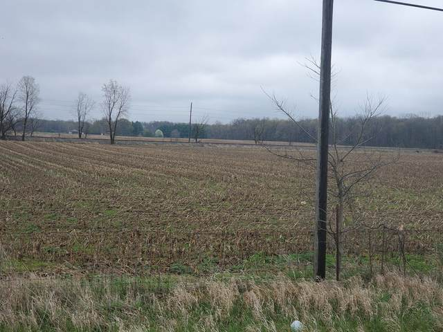 3*** N State Road 3, New Castle, IN 47362 (MLS #202112070) :: RE/MAX Legacy