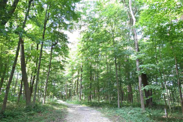 Lot 3 W 800 North, Rossville, IN 46065 (MLS #201601203) :: The Romanski Group - Keller Williams Realty