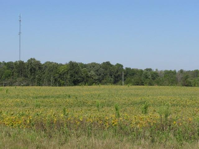 000 State Road 8, Auburn, IN 46706 (MLS #201544570) :: Parker Team