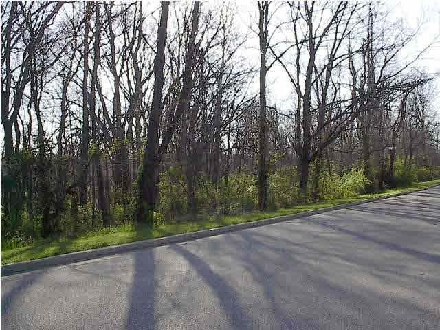 Lot 20 Lakewood, Vincennes, IN 47591 (MLS #201646676) :: The ORR Home Selling Team