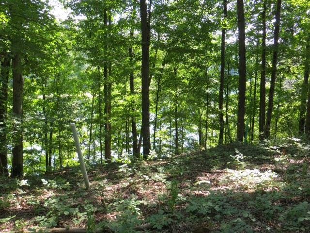 2836 E Pointe Cove Rd, Bloomington, IN 47401 (MLS #201728061) :: Parker Team