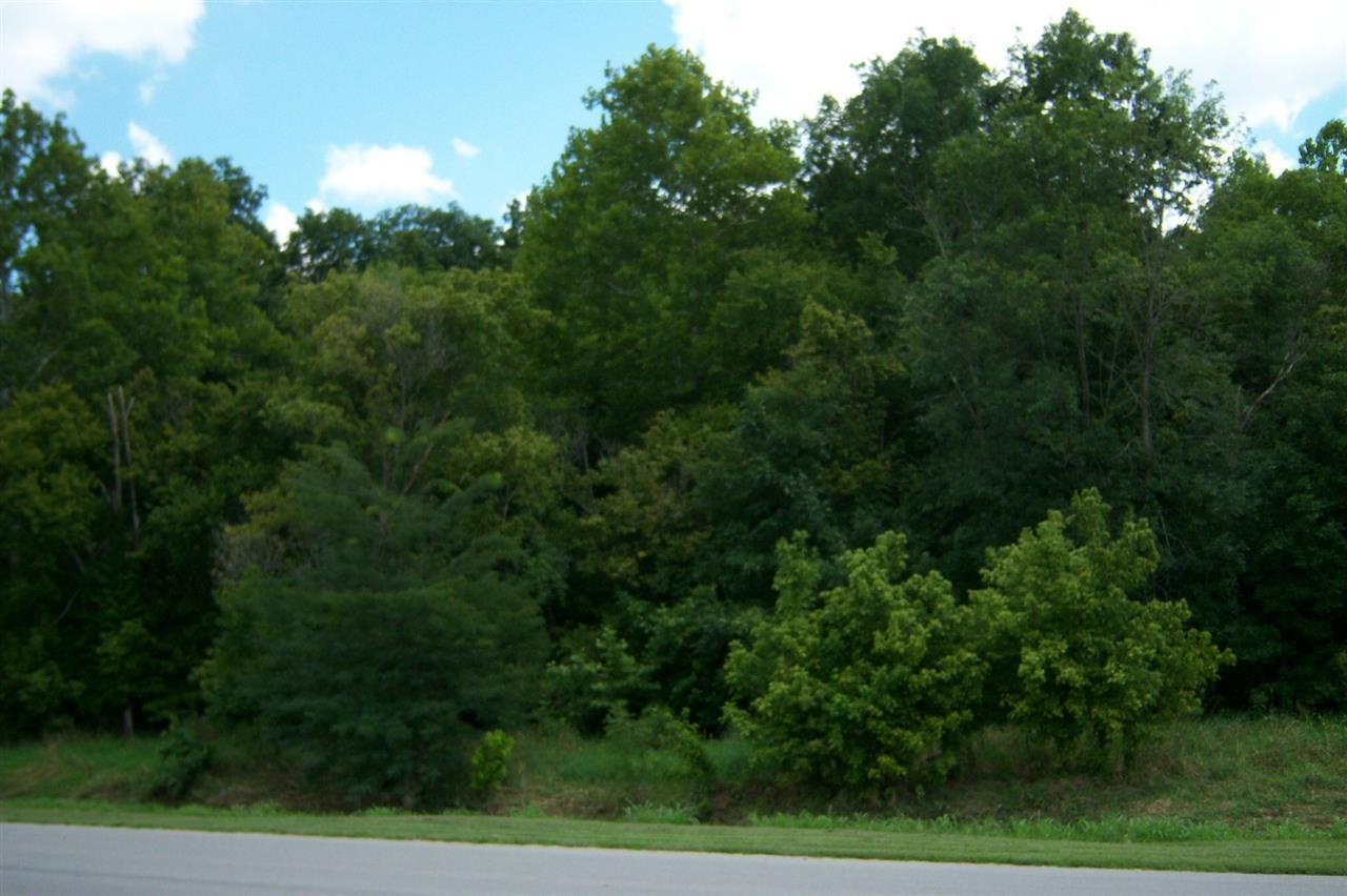 County Rd 1180 E. Land - Photo 1