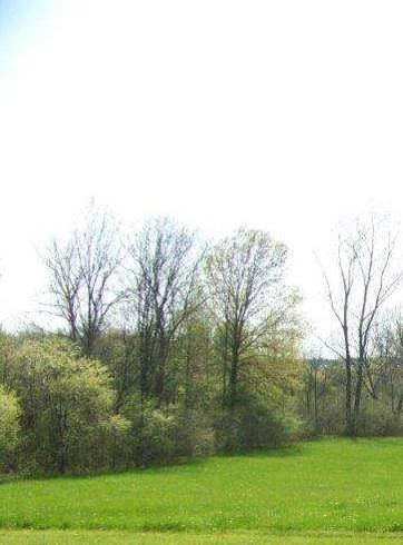 2621 S Crane Pond, Marion, IN 46952 (MLS #201901699) :: The ORR Home Selling Team