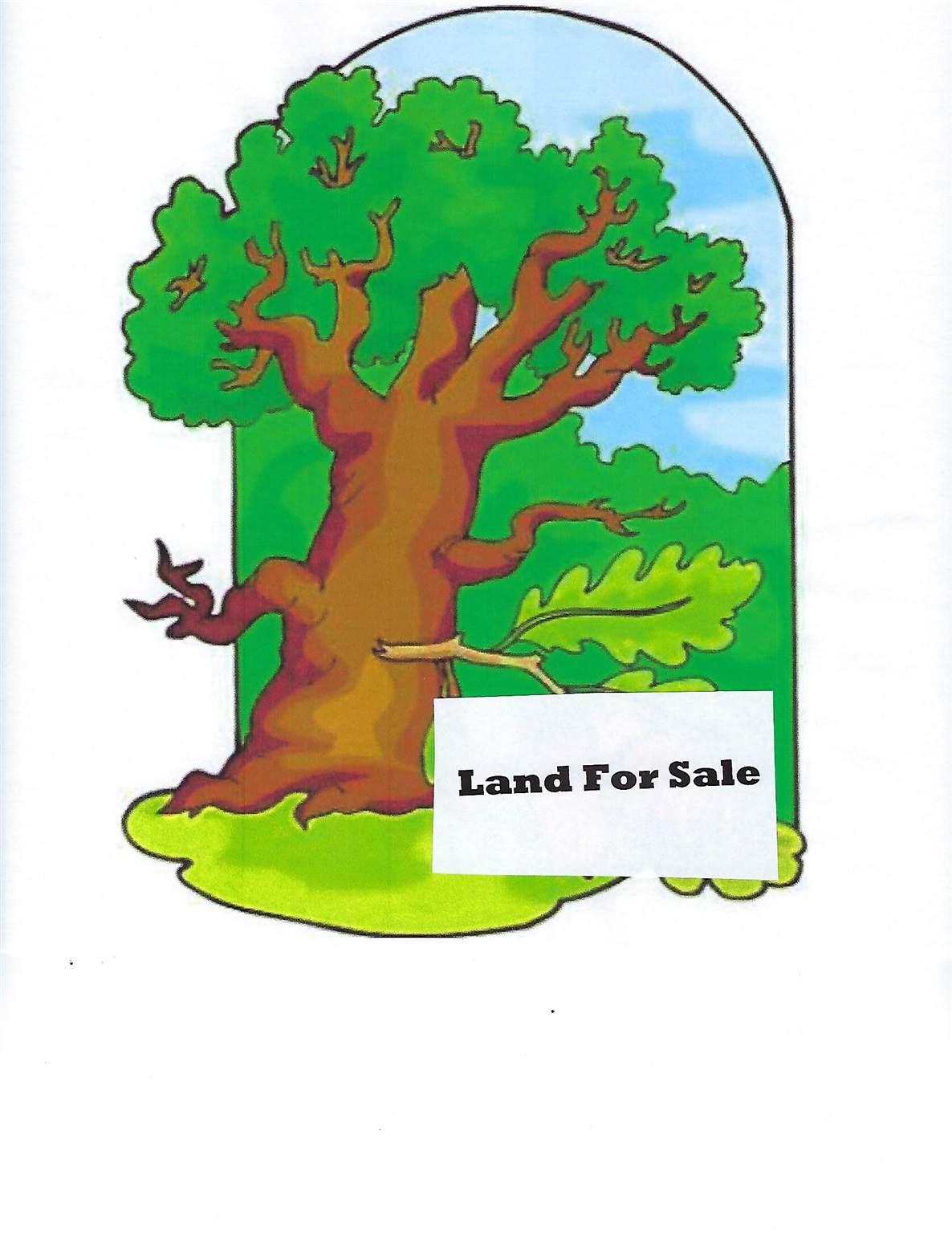 Lot #10 00 Lane 200Aa Lake Charles - Photo 1