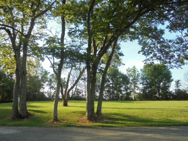 0 E Land E Hills And Dales Drive, Selma, IN 47383 (MLS #202005567) :: The ORR Home Selling Team