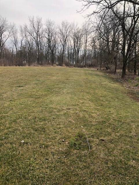 vacant land South Iroquois Street, Goodland, IN 47948 (MLS #202009276) :: The Romanski Group - Keller Williams Realty