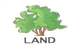 984 S Deer Run, Ellettsville, IN 47429 (MLS #202012468) :: The ORR Home Selling Team