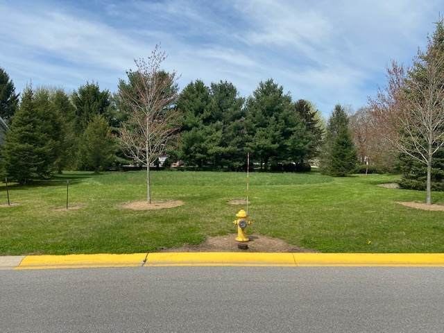 101 Wintergreen Drive, New Carlisle, IN 46552 (MLS #202015319) :: Aimee Ness Realty Group