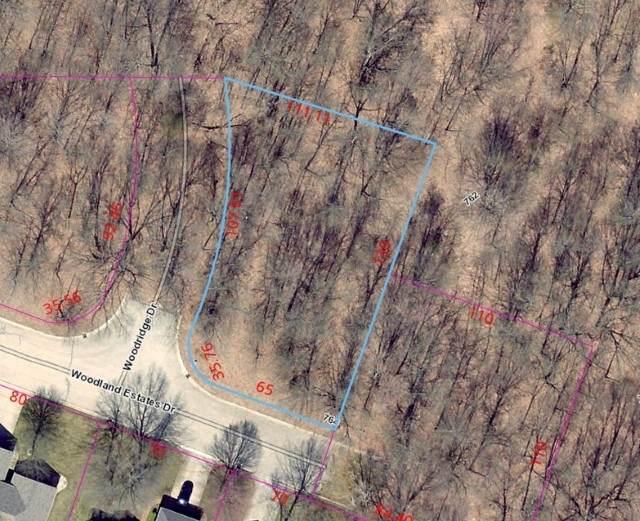 Lot 65 Woodridge Drive, Elkhart, IN 46514 (MLS #202026126) :: Anthony REALTORS