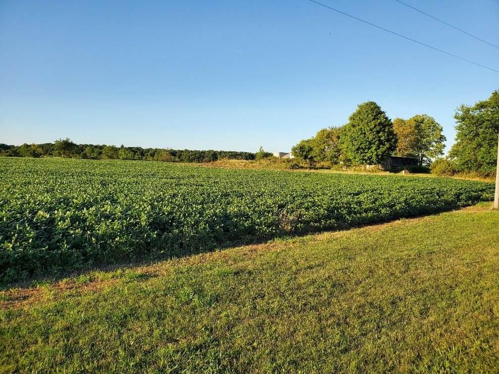 County Road 40 - Photo 1