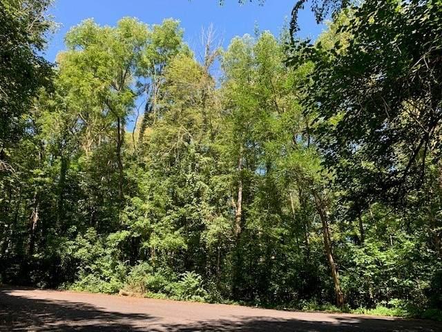 50 S Oak St, Flora, IN 46929 (MLS #202036011) :: The Romanski Group - Keller Williams Realty