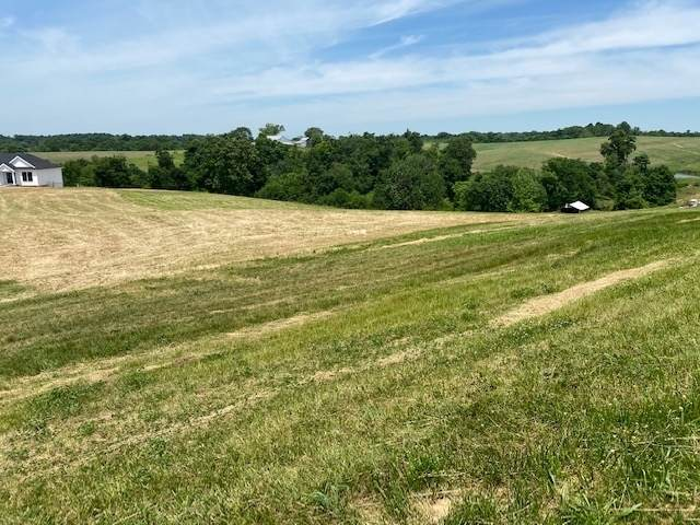 E 450 S County Road, St. Anthony, IN 47575 (MLS #202039392) :: The Dauby Team