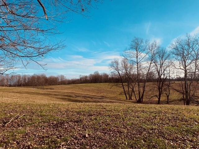 93 Acres +- Old Sr 37 N, Harrodsburg, IN 47434 (MLS #202047557) :: The Dauby Team