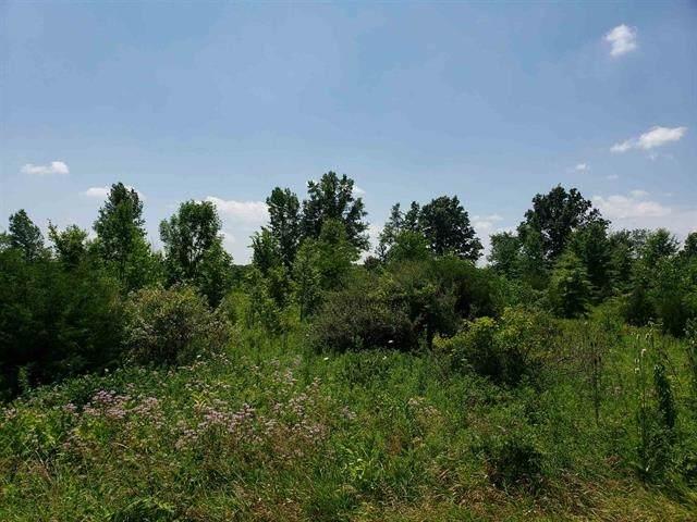 County Road 60, Saint Joe, IN 46785 (MLS #202101945) :: TEAM Tamara
