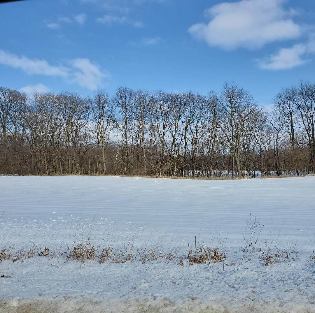 000 County Road 75 Road - Photo 1