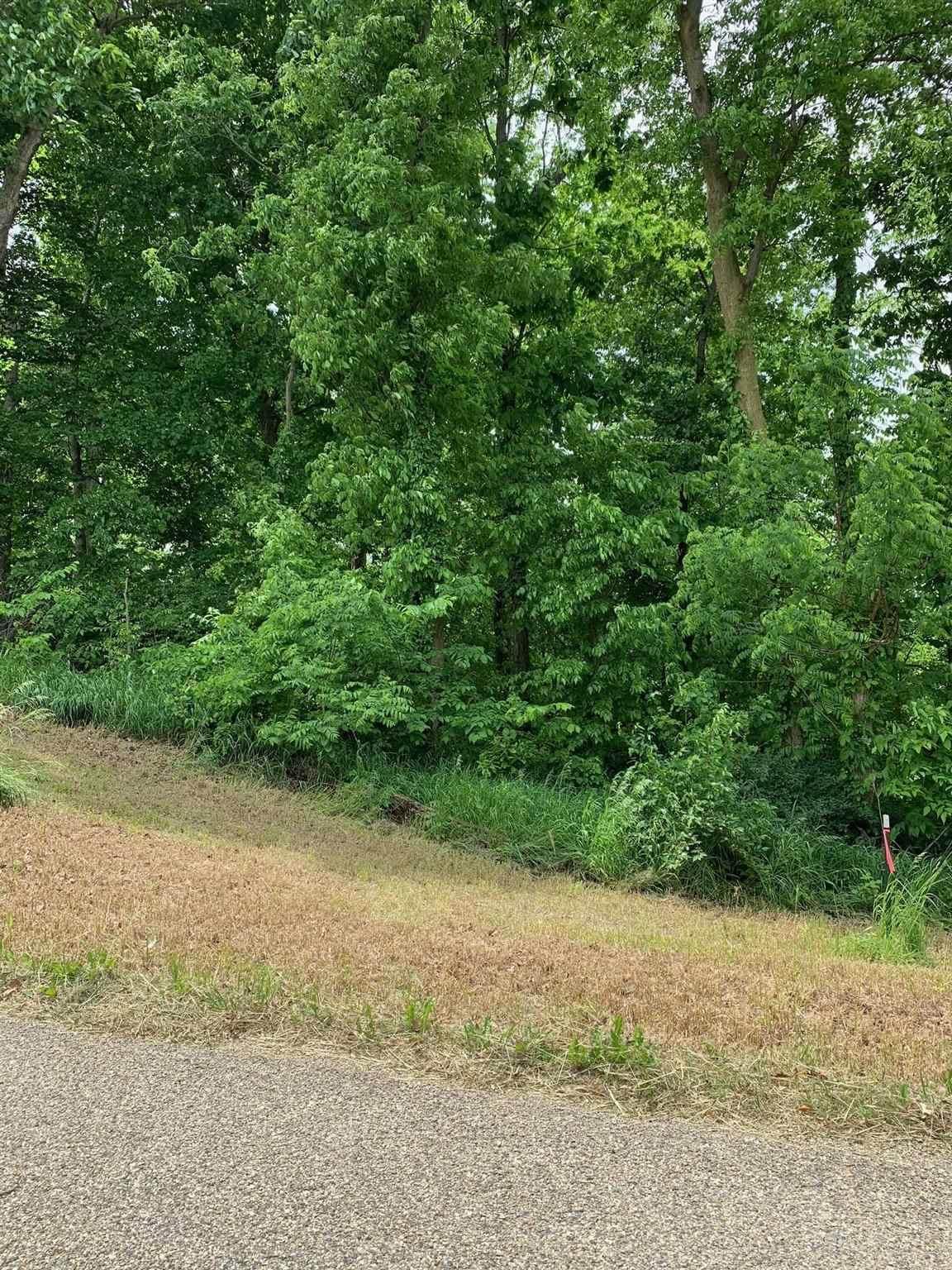 9026 Rainsville Rd - Lot 4 - Photo 1