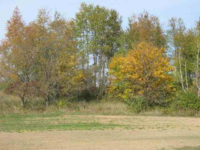 200 Mockingbird Ln, Warsaw, IN 46580 (MLS #514592) :: The ORR Home Selling Team