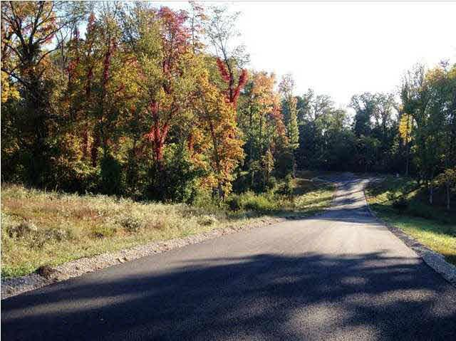 5900 Serenity Dr Lot 8, Mount Vernon, IN 47620 (MLS #950945) :: The ORR Home Selling Team