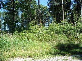 Hunter Ridge Ct, Lot 12, Monticello, IN 47960 (MLS #201517496) :: The ORR Home Selling Team