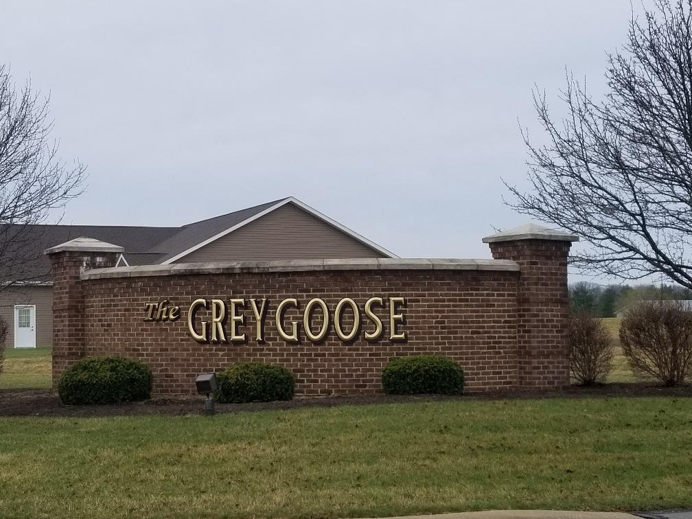 250 Grey Goose Court - Photo 1