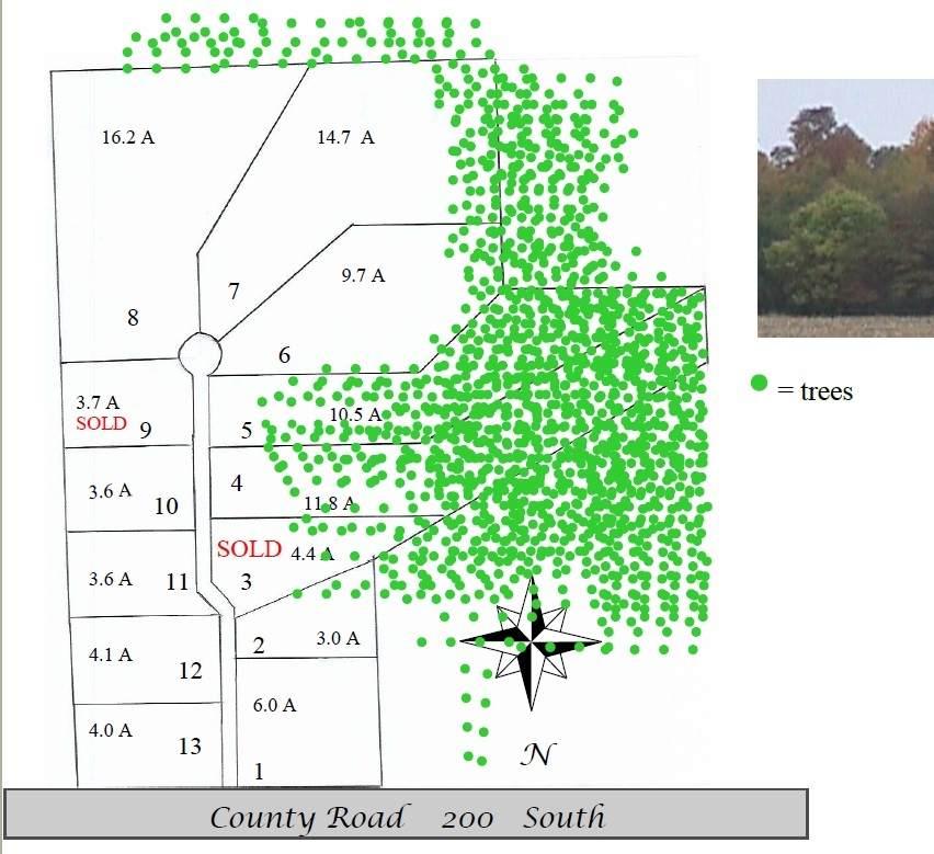 2114 Pine Run - Photo 1