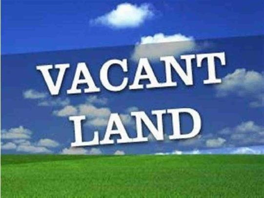 "LOT ""O"" W Mc Colm Road, Gaston, IN 47342 (MLS #20078549) :: The ORR Home Selling Team"